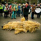 Death of the Straw Bear. by Ruth Jones