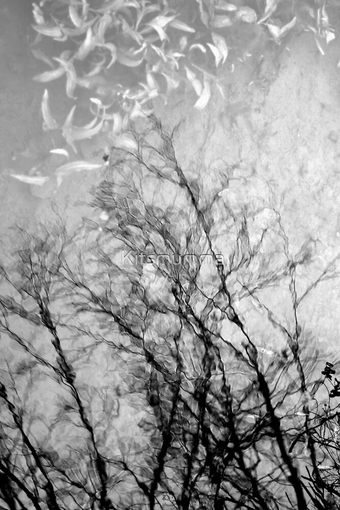 Nothing Written in the Sky by Kitsmumma
