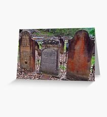 The Old St Albans Cemetery..16-1-11.. Greeting Card