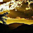 Golden Valley by Rinaldo Di Battista