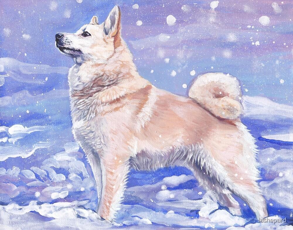 Norwegian Buhund Fine Art Painting by lashepard