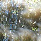 Gardens by kossimarsalsa