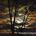 """""""Mysterious Night Sky's"""" by Doyle  McClung"""