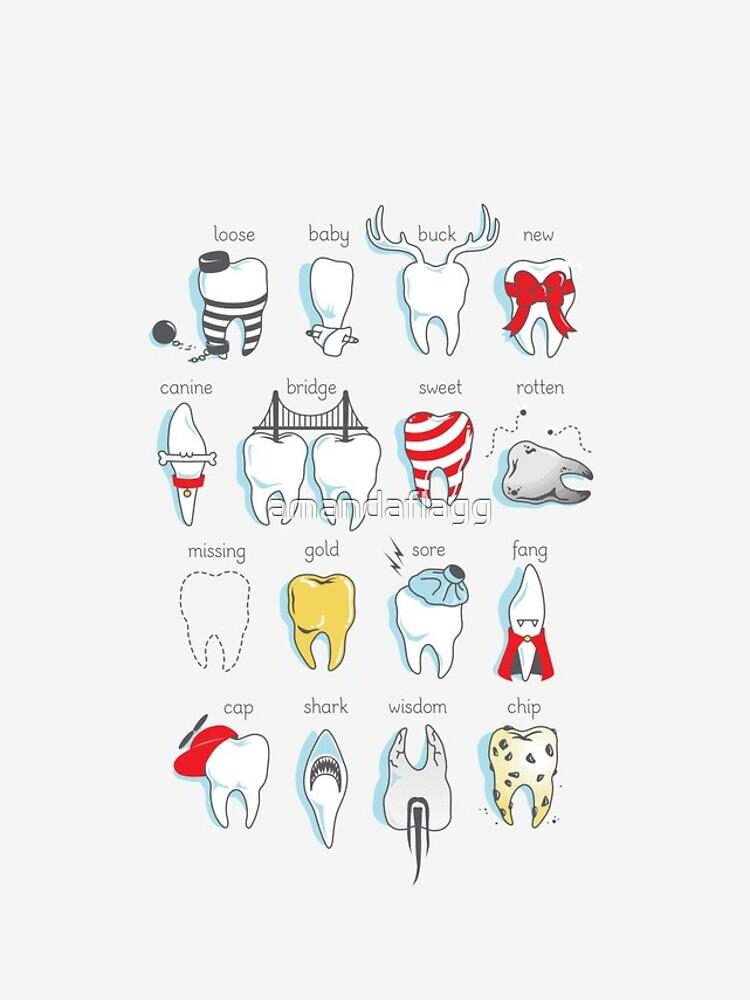 Dental Definitions by amandaflagg