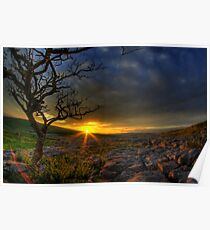 Sunset over limestone pavement, Malham Poster