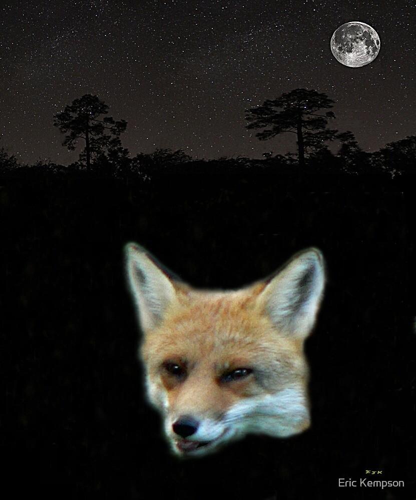 Eftalou Fox max by Eric Kempson