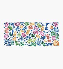 Henri Matisse Cut-Out Photographic Print