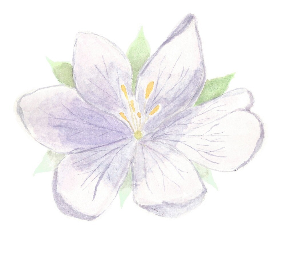 Purple Waterflower by SugarMouseArts