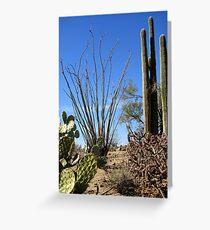 Nature's Cactus Garden Greeting Card