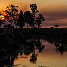 Sunset in the Ibera 2 by photograham