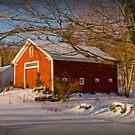 Fellows Farm by Diana Nault