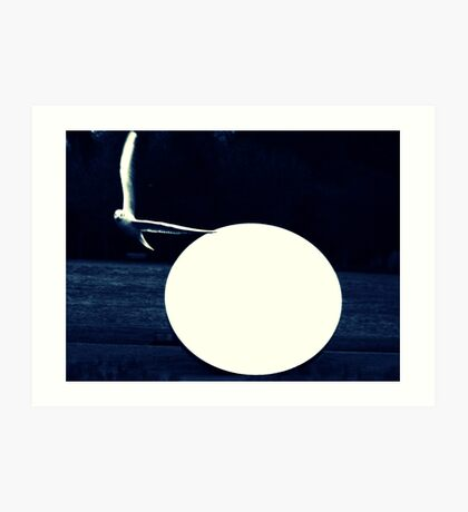 Seagull by the light of the full moon Art Print