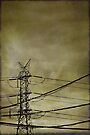 electrify by Anthony Mancuso
