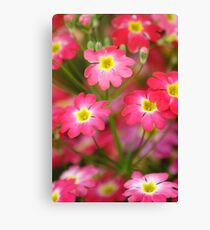 Spring Basket Canvas Print