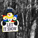 Let It Snow! by BigD