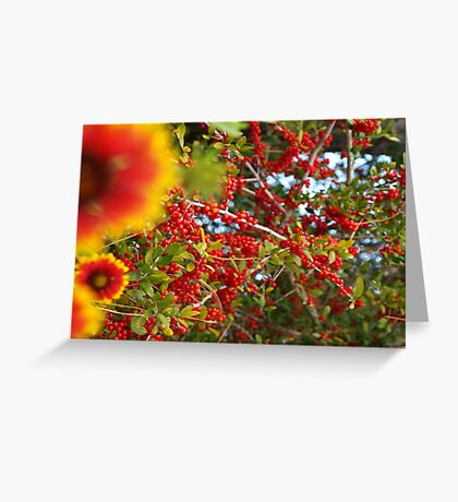 Florida seasonal medley Greeting Card