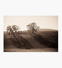 Long Shadows of Winter Photographic Print