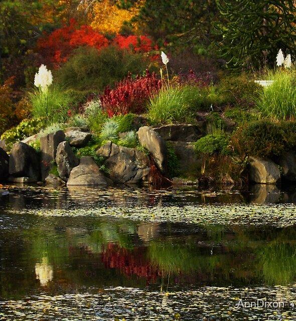 Autumn Reflection by AnnDixon