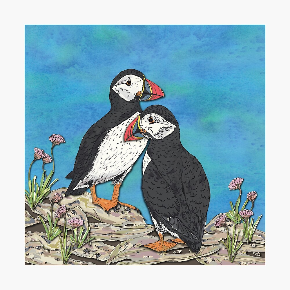 Puffin Perfection Photographic Print
