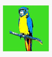 Parrot-Monkey Photographic Print