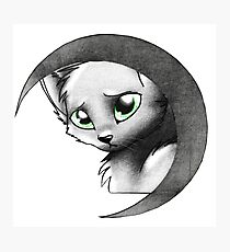 Cat & Moon Photographic Print