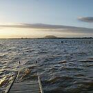 Long walk of a short pier no2 by trishringe