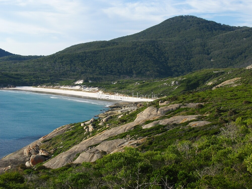 View to Squeaky Beach from Tidal Overlook by Marilyn Harris