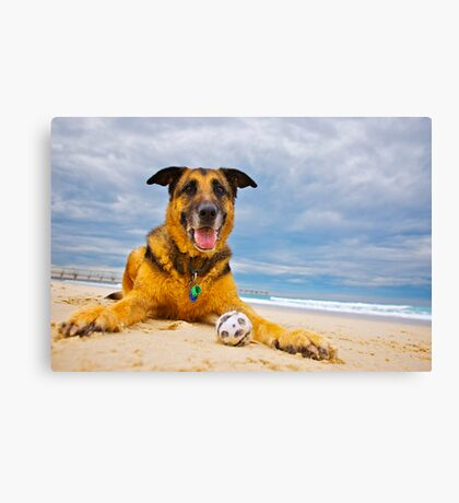 Pepper and the ball Canvas Print