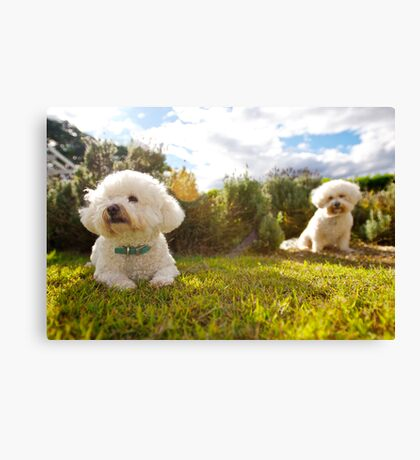 Pip & Poppy Canvas Print