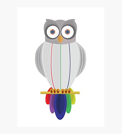 Rainbow Owl Photographic Print