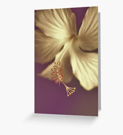 Sorrowful: Got 3 Featured Works Greeting Card