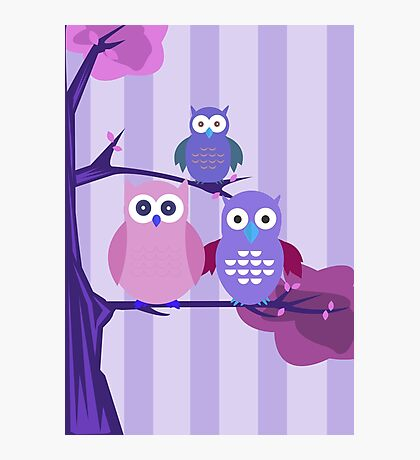 Purple Owls Photographic Print