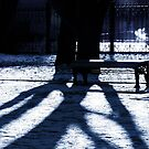 shadows in blue by Nikolay Semyonov