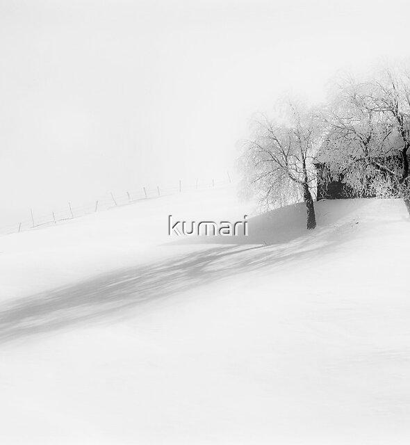 Mist by kumari