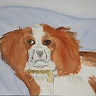 My Beloved Jenna ~ Cavalier King Charles Spaniel by daphsam