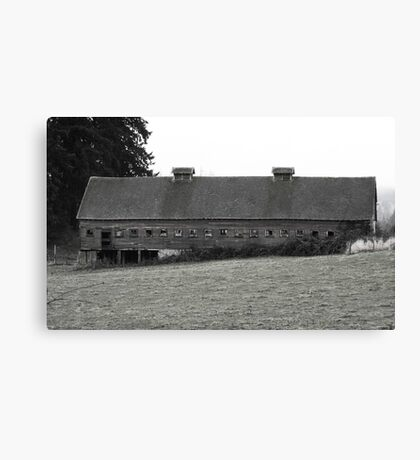 Window barn Canvas Print