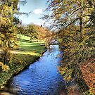 River Ure - Broughton Estate by Sandra Cockayne