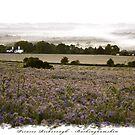 Vale of Aylesbury - Chiltern Hills, England by newshamwest