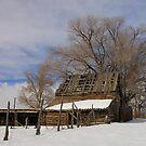 Country Barn by Gene Praag