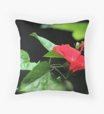 Butterfly Sanctuary Throw Pillow