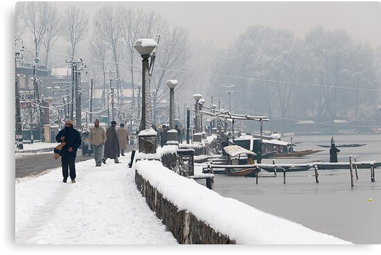Life after Snowstorm by Mukesh Srivastava