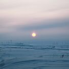 Sunset over Ob River, Siberia by Olga Zvereva