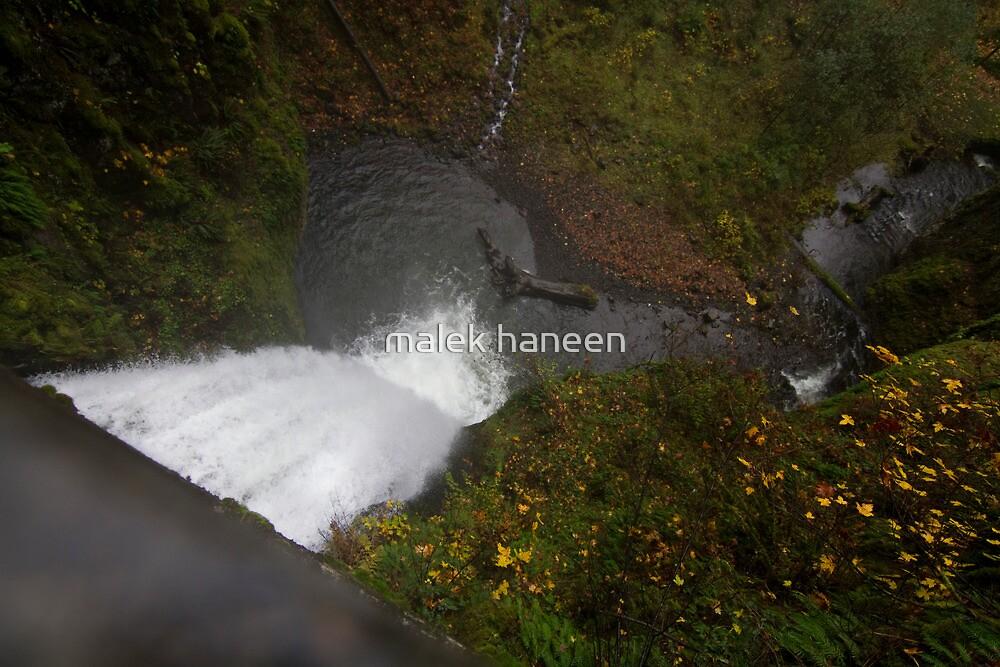 The fall by malek haneen