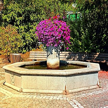 The village fountain of Eggendorf im Traunkreis by patrickjobst
