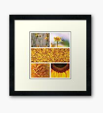 Collection ~ Yellow Flowers Framed Print