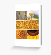 Collection ~ Yellow Flowers Greeting Card