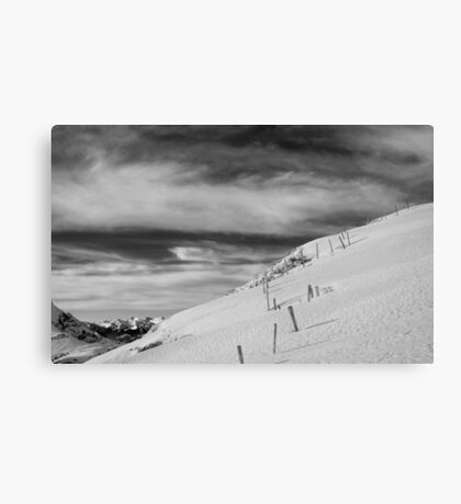 Marching On Canvas Print