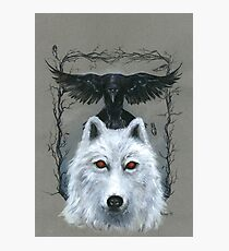 Ghost And The Three-Eyed Raven Photographic Print