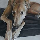 Bauregard Greyhound by Charlotte Yealey