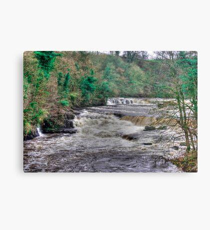 Aysgarth Falls  - Yorkshire Dales Metal Print